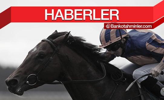 at yarışı haberleri